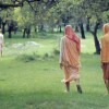 Vrindavan: The Land Where Krishna Lives