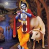 Becoming Eager to See Krsna