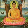 Lord Buddha — The Emblem of Theism