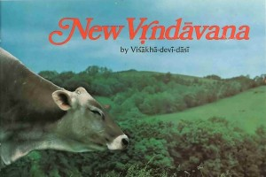 New Vrindavan -- Cow with New Vrindavan Hills in the background.