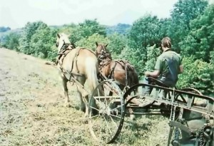New Vrindavan 1974.