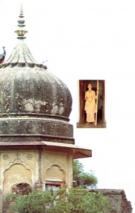 His Holiness Tamal Krishna Gosvami