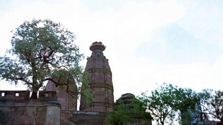 Radha Madhan Mohan temple Vrindavan 1975.