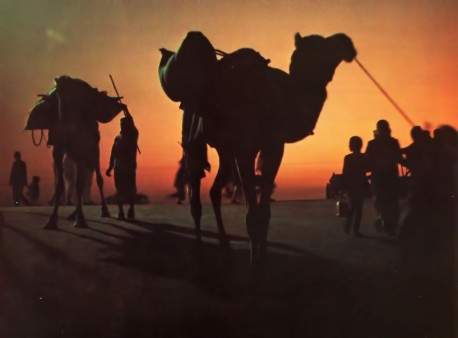 Sunset silhouttes pilgrims as they make their way to the River Ganges to celebrate the Kumbha Mela Festival.