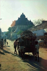 Oxcart filled with handmade clay pots makes its way to the Jagannatha Puri temple's main kitchen. 1976.