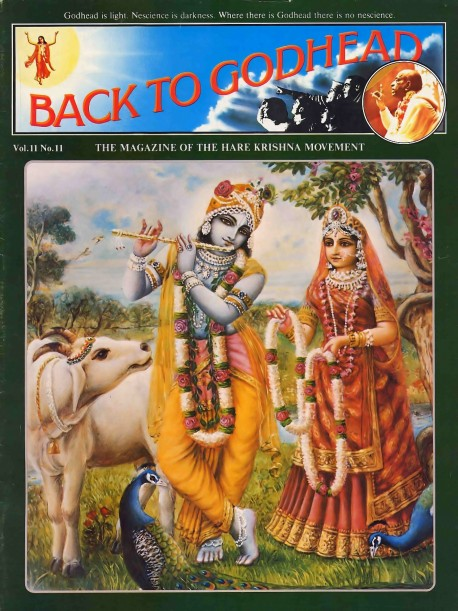 Back to Godhead - Volume 11, Number 11 - 1976 Cover
