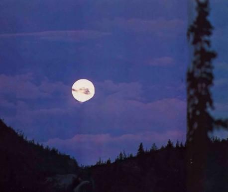 Of the stars I am the Moon -- Krishna