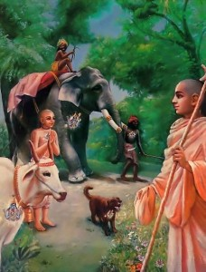 In any case the soul is the same. Therefore those who are advanced in spiritual consciousness see the same quality of soul in each and every body, whether it is the body of a dog or the body of a brahmana [saintly person].