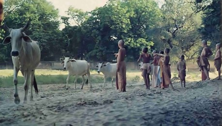 On your way to take a dip in the Yamuna, you can walk barefoot through the soft, beach like sands of the lush Vrndavana forest. At 4 P.M. or so, you're likely to meet the cows coming home. A simple life for the spiritually minded.