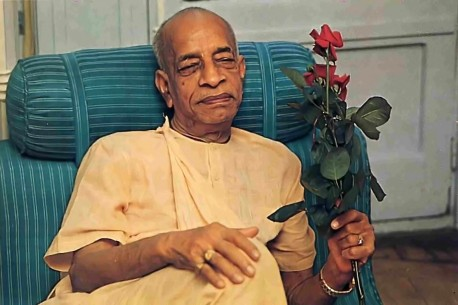 In his quarters, Srila Prabhupada accepts a flower from a disciple.  1977