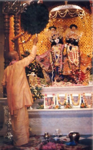 In each temple, Srila Prabhupada introduced the worship of Krsna's Deity forms, as here in Vrndavana, India.