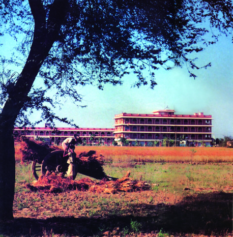 1978-04-13