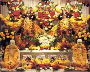 Their produce in the temple - through Srila Prabhupada and his spiritual master (lower altar) to Krsna, in the form of Sri Caitanya Mahaprabhu and Sri Nityananda Prabhu (upper altar).