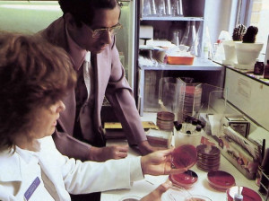 Bacteria cultures provide evidence for diagnoses in the hospital's lab.