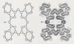 Fig. 6. (a) The structural diagram of an organic molecule. (b) An electron-density map for this molecule. Will the essence of consciousness be disclosed by the study of the structure and transformations of such patterns?