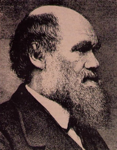 """'' I am in thick mud.""""-Charles Darwin"""
