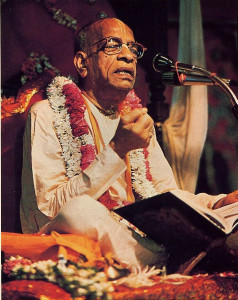 "Srila Prabhupada discourses on the Srimad -Bhagavatam. ""He has been very loyal to the tradition,"" says Dr . Hopkins. "" but he has communicated it interms that are comprehensible to a Westerner. """