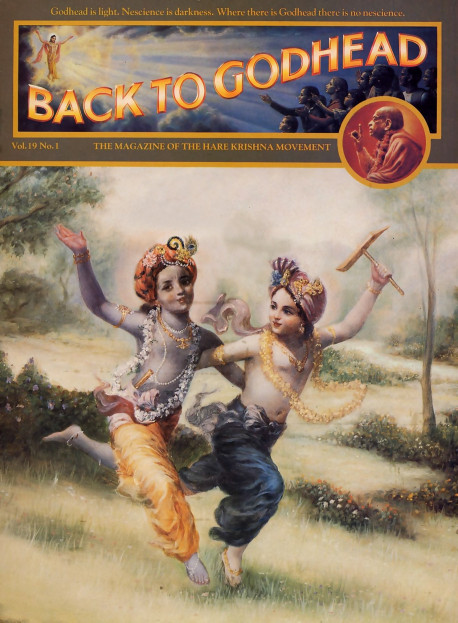 Frolicking in the fields of Vrndavana, the two transcendental brothers, Krsna and Balarama, enjoy an eternal, carefree childhood. They are the oldest of all personalities, and yet They never age past the full bloom of youth. Their uninterrupted pastimes, which are the object of meditation for great sages and mystics, are evidence that although these two brothers control the creation, maintenance, and annihilation of the material world, They personally have no work to do. Their only business is enjoyment.
