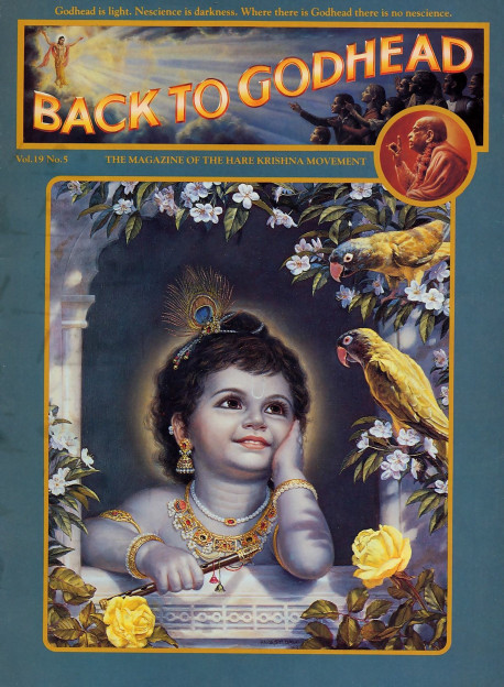 Playing as a child in the transcendental land of Vrndavana, Krsna, the Supreme Personality of Godhead, enjoys the association of His pure devotees. In Vrndavana even the animals, trees, and inanimate objects are conscious of Krsna's all-enchanting beauty and try to please Him in all respects.