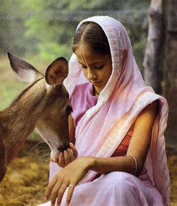 Ananda dasi feeds one of the deer that graze on the homestead