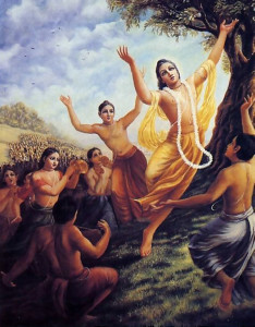 Lord Caitanya (wearing yellow dhoti) predicted that the chanting of Hare Krsna would spread to every town and village in the world.