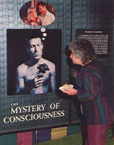 "A visitor explores ""The Mystery of Consciousness"" while savoring the mysteriously good tastes of the festival refreshments."