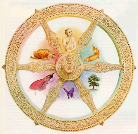Reincarnation—The Soul's Journey on the Wheel of Birth and Death