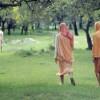 Vrindavan: The Land Where Krishna Lives