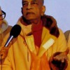Tiger Consciousness — Srila Prabhupada Speaks Out