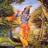 Placing Our Love in Krsna