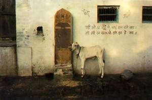 On a Side Street in Vrindavan -- 1974