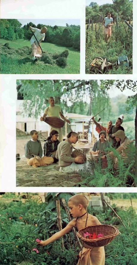 ISKCON New Vrindavan Farming Activities. 1974.