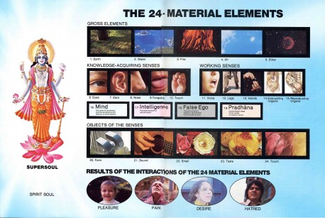 The 24 material elements