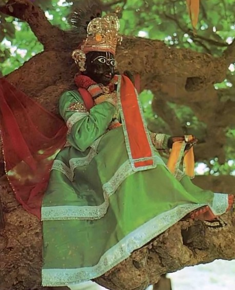 Vrindavan 1975, Krishna deity in tree.