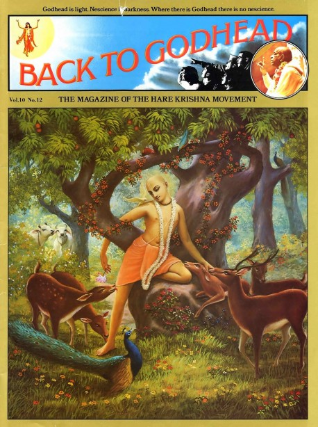Back to Godhead - Volume 10, Number 12 - 1975 Cover