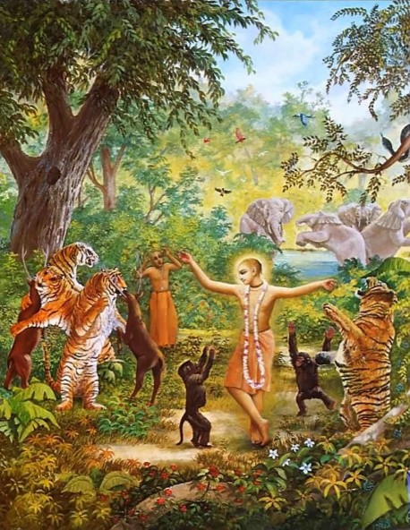 Lord Caitanya: Inspiring the Jungle Animals