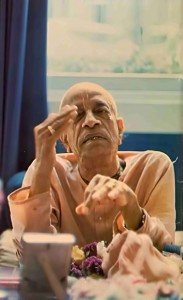 "Srila Prabhupada: ""The animals cannot be educated about God, but human beings can."" 1976."