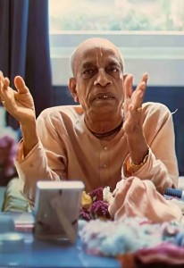 "Srila Prabhupada: ""ff you do not understand spiritual life, you remain like an animal, in ignorance."" 1976."