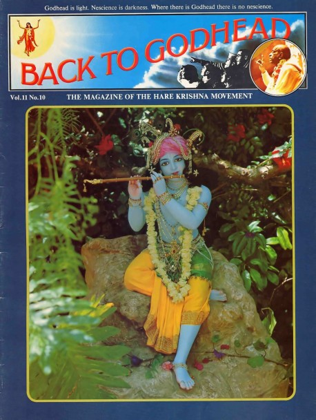 Back to Godhead - Volume 11, Number 10 - 1976 Cover