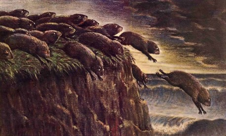 Lemmings following the leader into the sea.