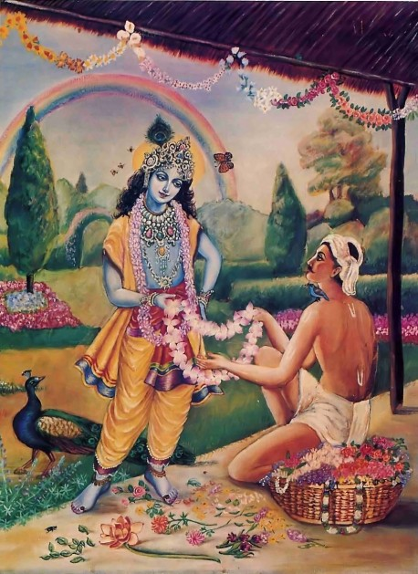 By surrendering to Lord Krishna, the soul evolves to the pinnacle of consciousness pure love of God.