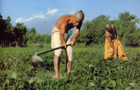 With the snow-covered Andes as a backdrop, devotees work their fertile eight-acre plot.