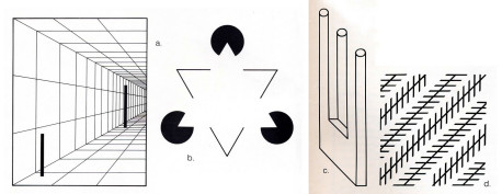 "Our eyes often play tricks on us. The two bars in figure a. are of equal height. The white triangle in figure b. isn't really there. The drawing of the "" trident"" in figure c. befuddles our mind and eye with its impossible perspective. And the diagonal lines in figure d. are parallel."