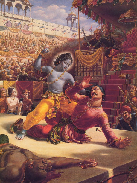 The powerful tyrant, Kamsa, was as vile as they come. After usurping the throne from his fat her and killing and imprisoning many of his own relatives, he turned on his chief rival, Lord Krsna. Kamsa feared Krsna and wanted Him dead. But he didn't realize his mortal enemy was the immortal Supreme Personality of Godhead, the protector of pure-hearted devotees and annihilator of miscreants.