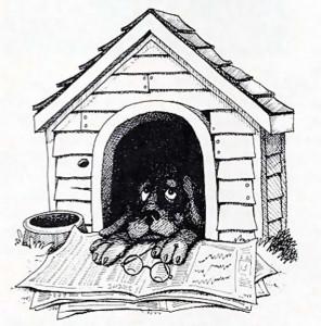 1984-05-12