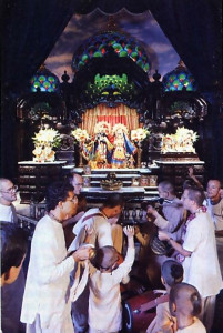 Devotees gather in the temple each morning to chant and dance for the pleasure of the Deities.