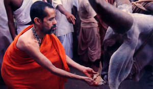 At the gala reception for the procession. His Holiness Visvesa Tirtha, the present paryaya svami of Sri Krsna Matha, offers rice cakes to the bullocks. At journey's end in Mayapur, West Bengal, in March 1986, the pilgrims will have traveled four thousand miles.