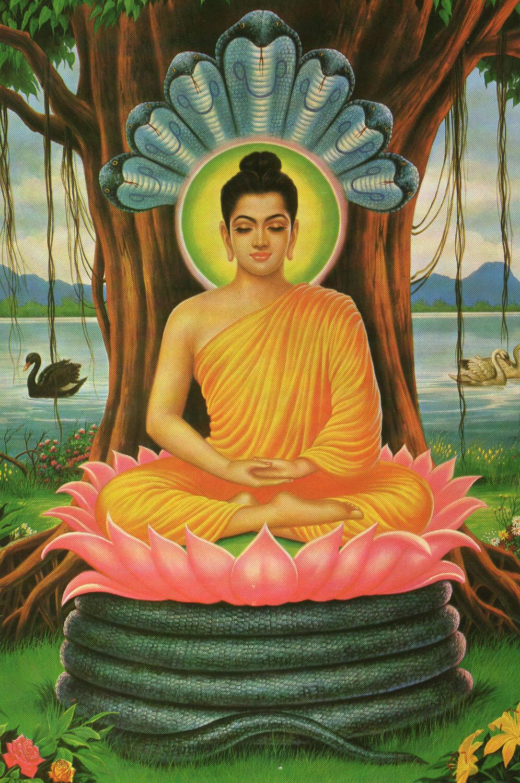 lord buddha the emblem of theism back to godhead